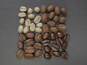 Kaffeebohnen Testbericht
